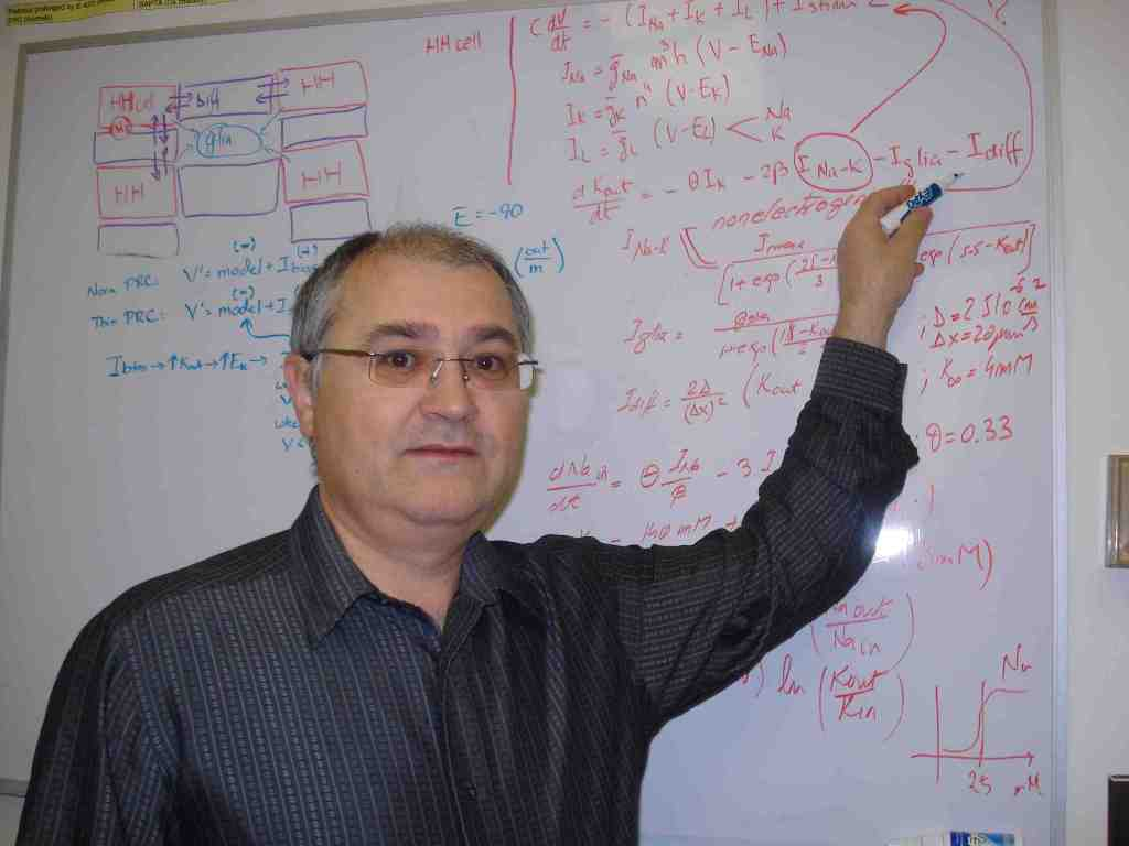Sorinel Oprisan, absolvent UAIC, profesor la Charleston College