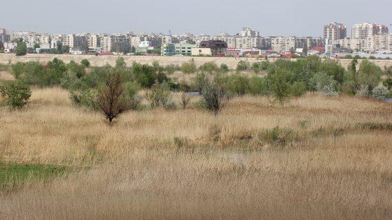 """Groapa Văcăreşti de la """"încremenirea în proiect"""" la cel mai mare parc natural urban din România"""