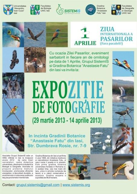 Expoziție de fotografie, dedicată Zilei Păsărilor