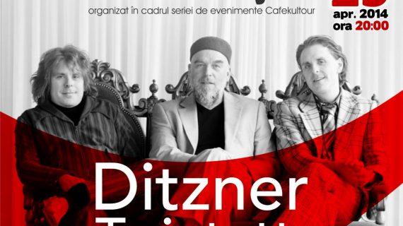 "Ritmuri de jazz extraordinare cu ""Ditzner Twintett"" din Germania"
