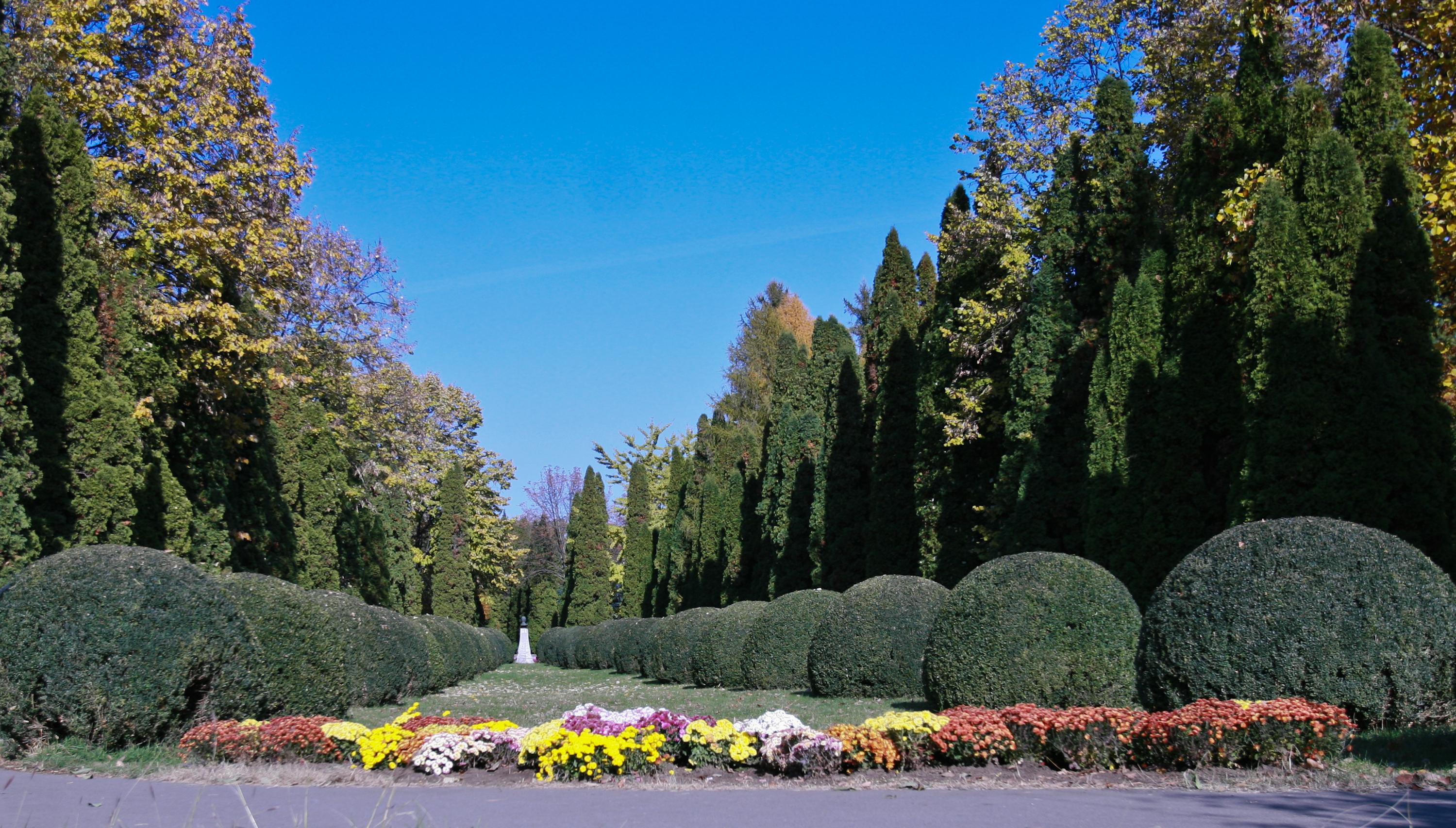 "Grădina Botanică ""Anastasie Fătu"""