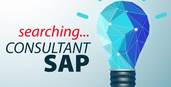 Red Point angajează Consultant SAP
