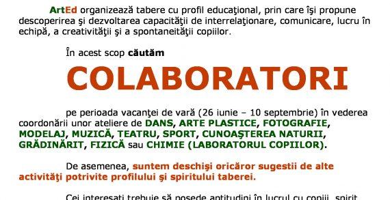 ArtEd caută colaboratori pentru tabere educaționale