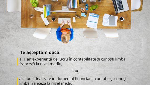 VEO angajează contabil vorbitor de limbă franceză