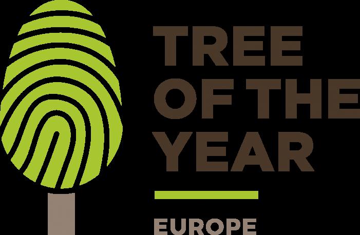 Românii pot vota arborele european al anului