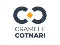 Cramele Cotnari angajează contabil