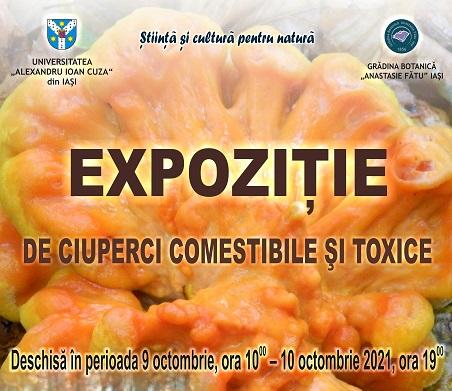 """Expoziție de ciuperci comestibile și toxice la Grădina Botanică """"Anastasie Fătu"""" a UAIC"""
